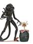Aliens Ultimate Warriors Xenomorph Pack - BROWN